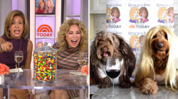 Bow wowzer! These dogs dressed up as KLG, Hoda for Halloween