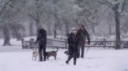 Arctic Blast Set to Bring Wintry Weather to Much of the U.S.