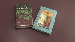 Virginia Schools Pull 'To Kill a Mockingbird,' 'Huckleberry Finn After Parent's Complaint