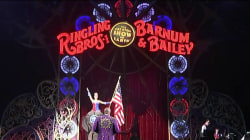 Ringling Bros. circus to close down after 146 years