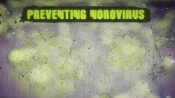 Norovirus, Contagious Virus With No Vaccine, Shuts Down Schools
