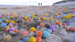 On an Island in the North Sea, Easter Has Arrived Early