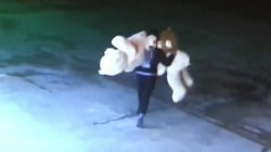 Surveillance Video Shows Smash and Grab for Stuffed Animals