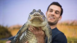 'Sexiest veterinarian' Evan Antin brings exotic wildlife to TODAY