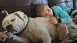See the special bond between one nonverbal boy with autism and his deaf shelter dog