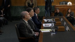 Senate Intel Hearing: 'Ample Examples' of Russian Interference in European Elections