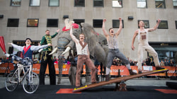 Watch Circus 1903's high-flying acrobats perform live on the plaza