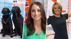 Slice of Orange: Puppies pack the studio and Dylan is back in action!