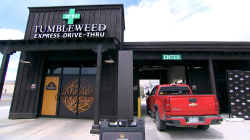 Colorado pot shop opens nation's first drive-thru dispensary