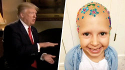 Highs and Lows: Trump talks about cake, girl with alopecia wins crazy hair day