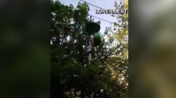 Caught on camera: 14-year-old girl falls from Sky Ride at Six Flags