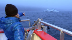Dylan Dreyer visits Newfoundland's majestic Iceberg Alley
