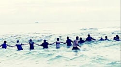 Watch dozens form human chain to rescue stranded swimmers in Florida