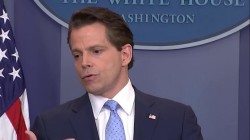 Scaramucci Hints at How He'll Deal With Trump's Tweets