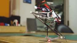 This Adorable Jumping Robot Will Leap Right Into Your Heart