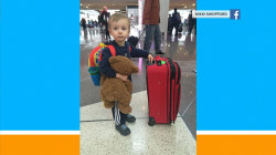 'Missing bear alert' leads to joyful reunion between boy and toy