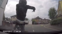 Dashcam video catches would-be insurance scammers red-handed