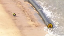 Giant Pipes Wash Up on U.K. Beaches