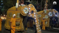 Parade of Elephants Kicks Off Festival in Sri Lanka