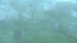 Hurricane Maria: Fallen trees and flying debris in San Juan