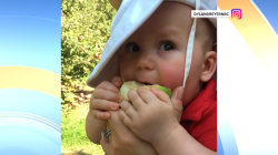 Watch Dylan Dryer's baby Calvin eat his first apple