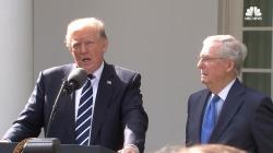 Trump: WH Will 'Look Into' Exposé on Drug Czar Nominee