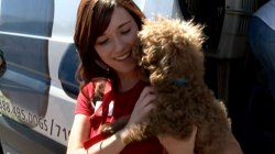 California becomes first state to ban puppy mills