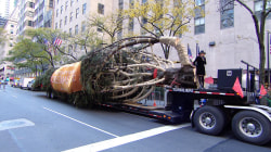 Rockefeller Center Christmas tree arrives to the plaza live on TODAY