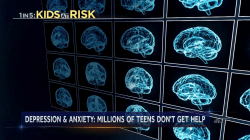 20 percent of America's youth suffer from a mental, emotional or behavioral condition