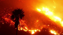 Thomas Fire third largest in California history