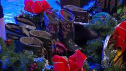 Megyn Kelly audience members receive Bogs footwear, portable chargers