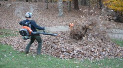Dad using leaf blower gets a big surprise