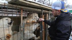 U.S. Olympian 'heartbroken' by South Korean dog meat farm