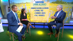 How to survive spring allergies — and prevent them before symptoms start