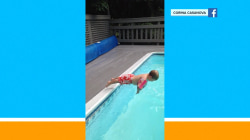 Learning to dive, little boy makes a big flop in adorable video