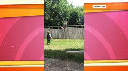 Watch this adorable 2-year-old play the best game of fetch with neighbor's dog