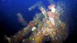 Underwater drone shows wreckage of WWII destroyer off Alaska's coast