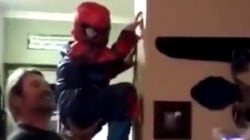 Little Spider-Man swings around house with help from dad