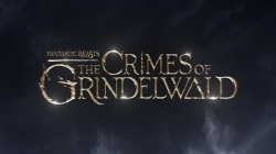 See 'Fantastic Beasts: The Crimes of Grindelwald' full trailer