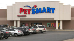 Investigation shows 47 dogs died during or after PetSmart grooming
