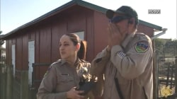 Watch: Deputy sees color for 1st time with special eyeglasses