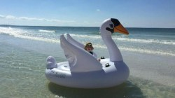 Mother and son rescued after drifting away on inflatable swan
