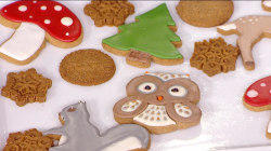 The Scott brothers learn how to make yummy holiday spice cookies