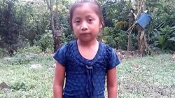 7-year-old who died at border waited 90 minutes for medical care