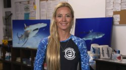 Hawaii diver talks swimming with largest great white shark on record