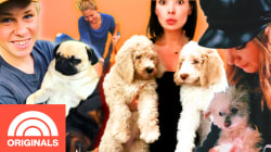 Top 5 Celebrity Pet Tales With Candace Cameron Bure, Bindi & Robert Irwin, and More