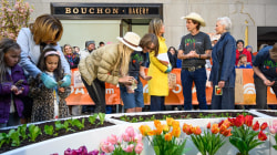 Plant a Seed Day: Kimbal and Maye Musk want families to grow healthy food