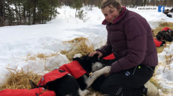 Rookie musher and her #UglyDogs raise money for students
