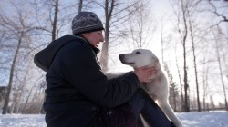 Iditarod racer and her #UglyDogs become internet sensations