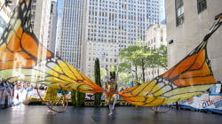 See Cirque Du Soleil: Luzia perform live on the TODAY plaza
